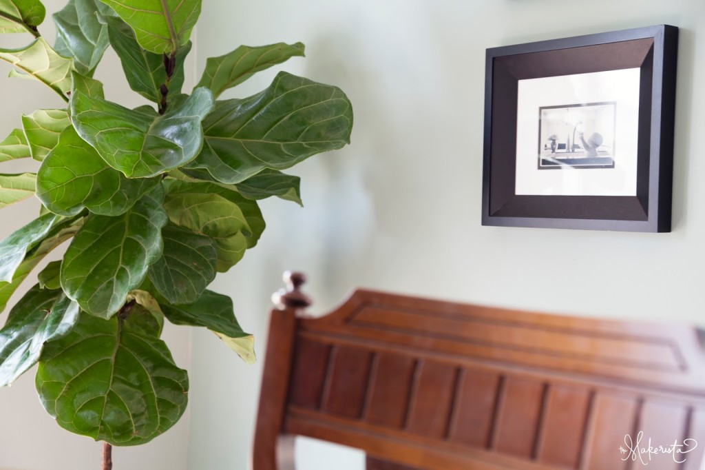 Making A Home Adding Easy And Affordable Houseplants To Your E The Makerista